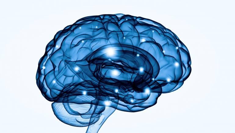 La inmunoterapia abre posibilidades de tratamiento al mal de Parkinson