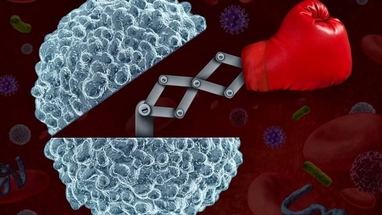 Nanoodontología: el Futuro de la Odontología Basada en Sistemas Nanotecnológicos Nanodentistry: the Future of Dentistry Based on Nanotechnology Systems