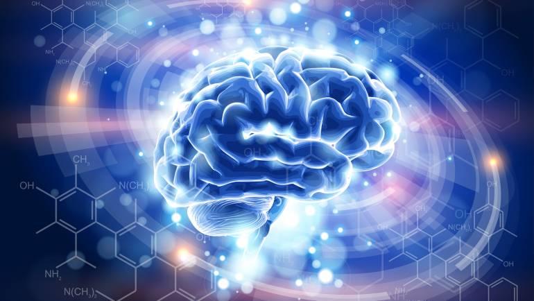 """¿Es posible """"Insertar"""" conocimientos directamente en el cerebro?"""